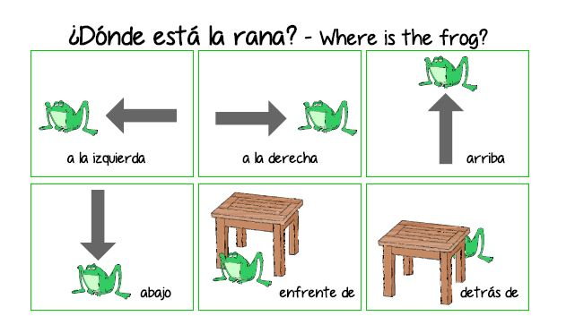 ¿Dónde está la rana? – Where is the frog?